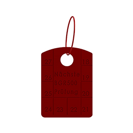 Grade 80 Annual Control Tag for Chain Slings
